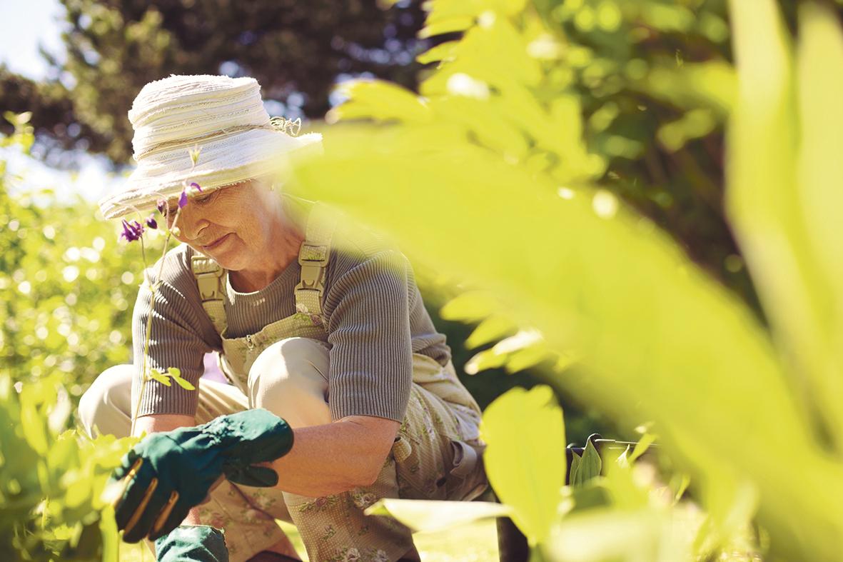 Seniorin bei der Gartenarbeit.
