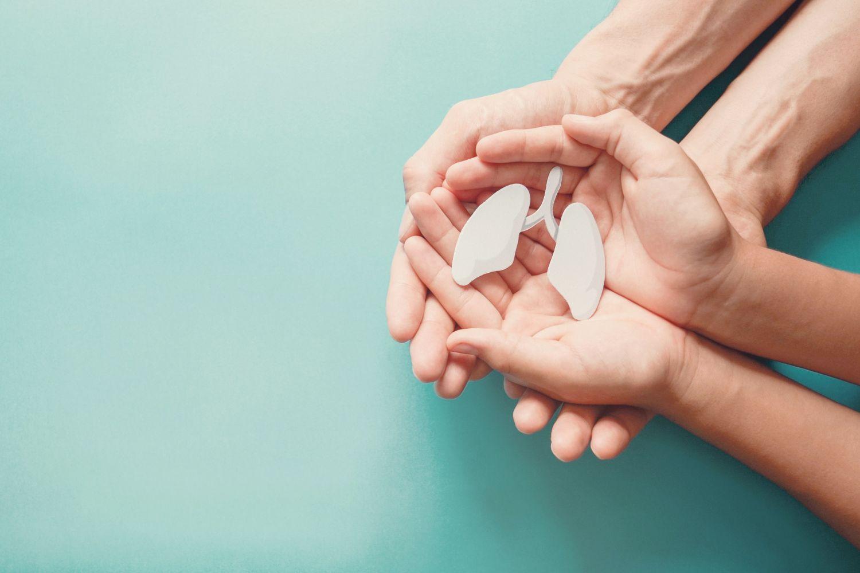 Hände halten schützend ein Modell der Lunge