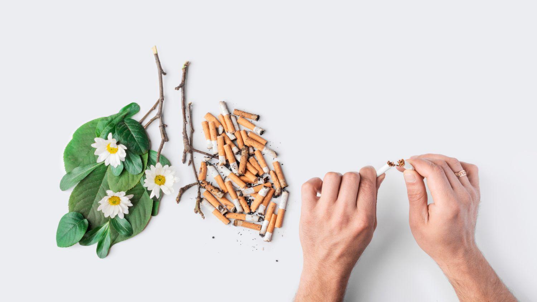 Verbildlichung einer Lunge bevor und nachdem aufgehört wurde zu rauchen.